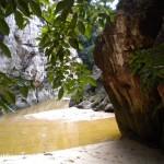 Parc national Bako Bornéo prés de la plage