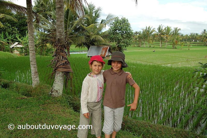 Indonésie Bali Ubud rizières jumeaux