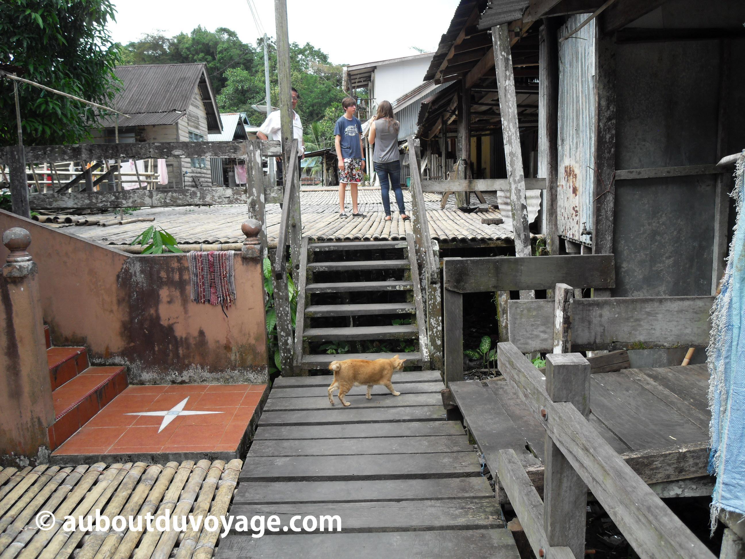 Bornéo Long house 1 visite
