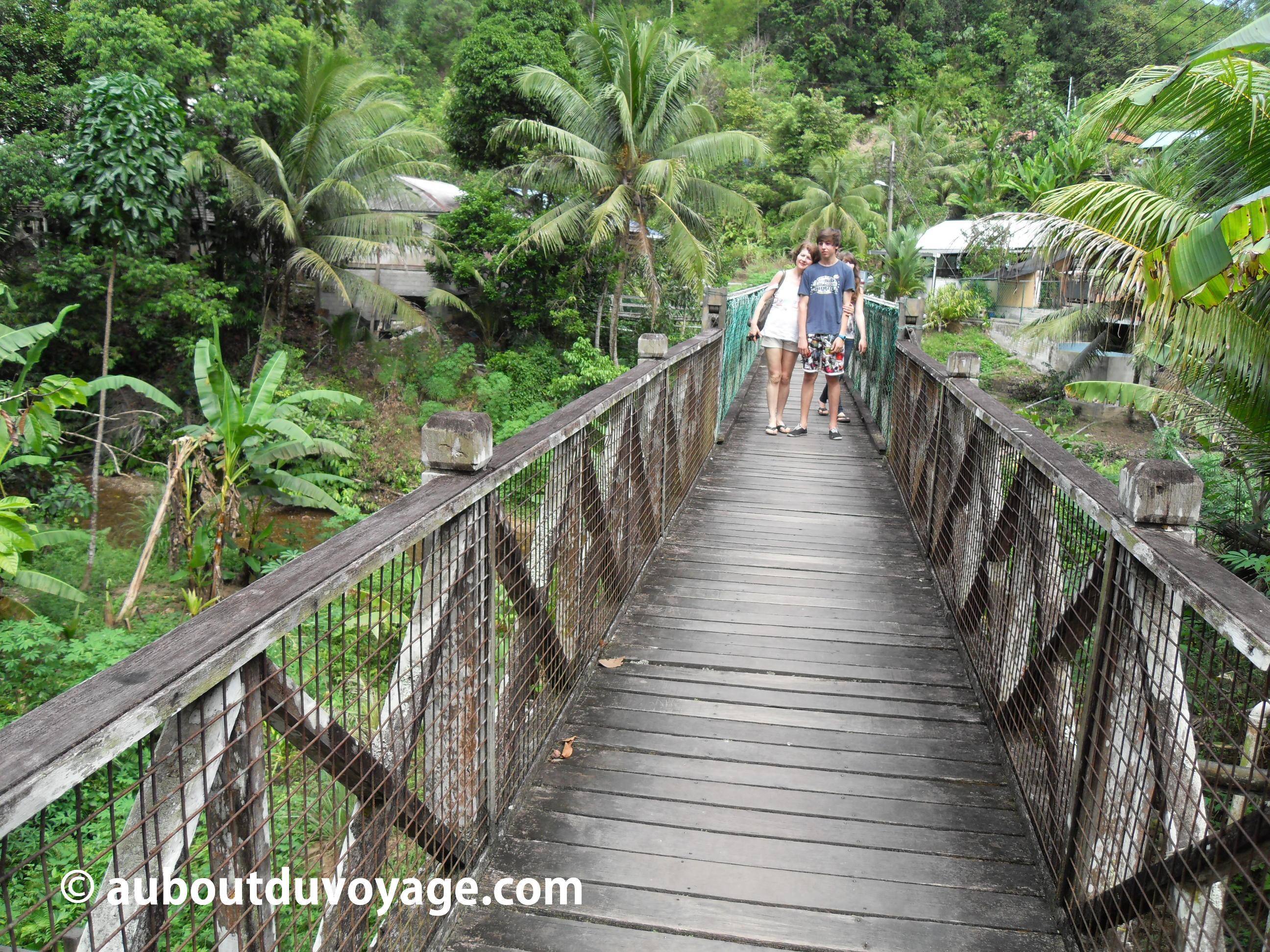 Bornéo Long house 1 pont