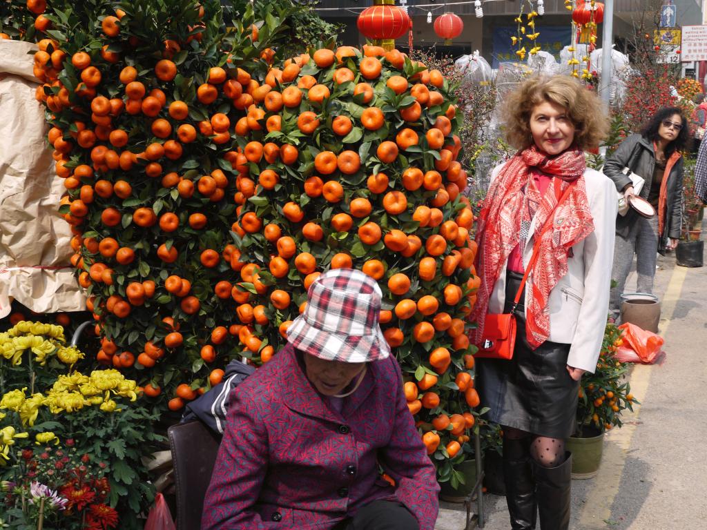 Ici le mandarinier remplace le sapin de noël à l'approche du nouvel an chinoisl